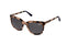 Superdry Sunglasses - Augusta 172