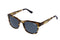 Superdry Sunglasses - Bakersfield 109