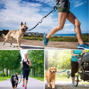 Retractable Hands-Free Dog Leash