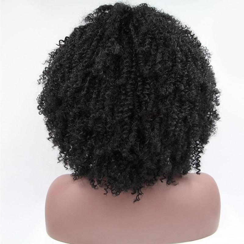 Curly Wigs for Women Black Afro Curly Wig Synthetic Hair Wigs - Jeybeauty