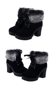 High Heel Boots Plush Warm Fur Shoes Ladies Brand Ankle Botas - Jeybeauty