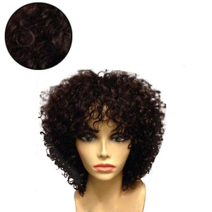 Short Curly Wigs Fluffy Afro Full Synthetic Wig Curly Hair Wigs - Jeybeauty