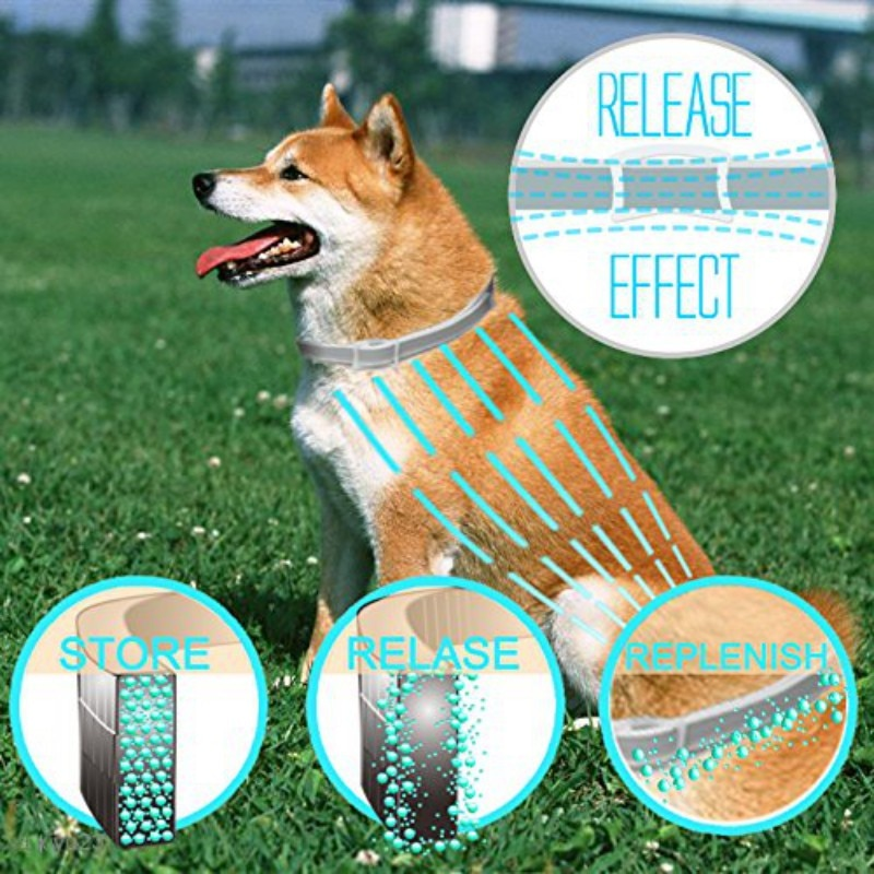Anti-parasites Collars For Dog - Jeybeauty