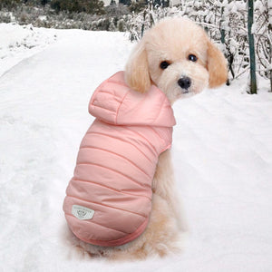 Waterproof Dog Jacket Winter