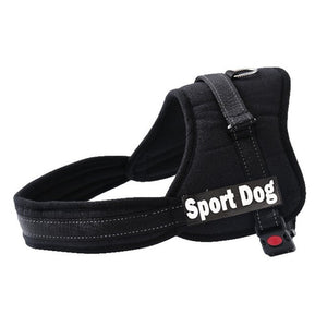 DoggyTaste Personalized Dog Harness