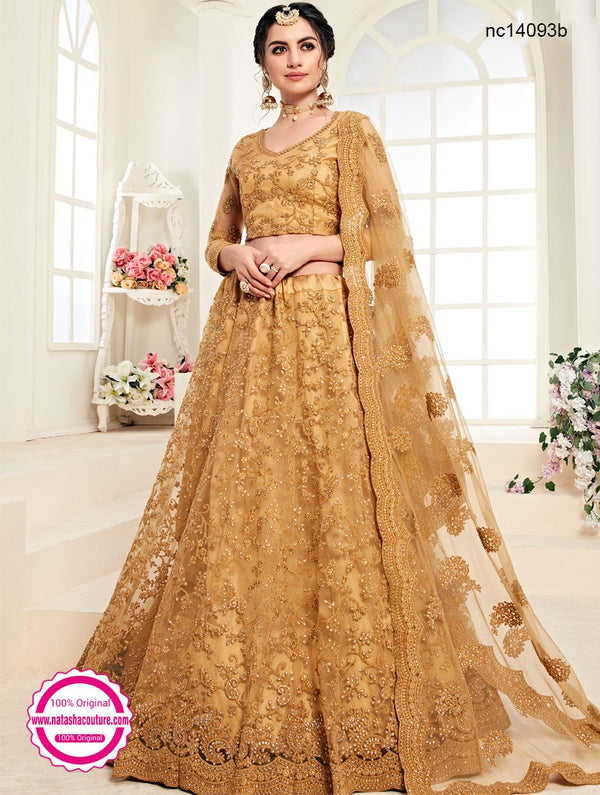 Light Brown Net Lehenga Choli NC14093B