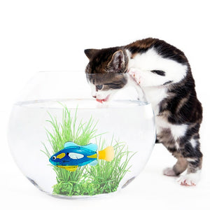 Swimming Fish Cat Toy - Proceeds Help Support Cat Hospice for Special Needs Kitties