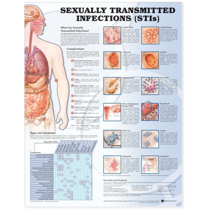 Sexually Transmitted Infections Anatomical Chart