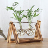 Walastyle Glass Planter Bulb Vases With Wood