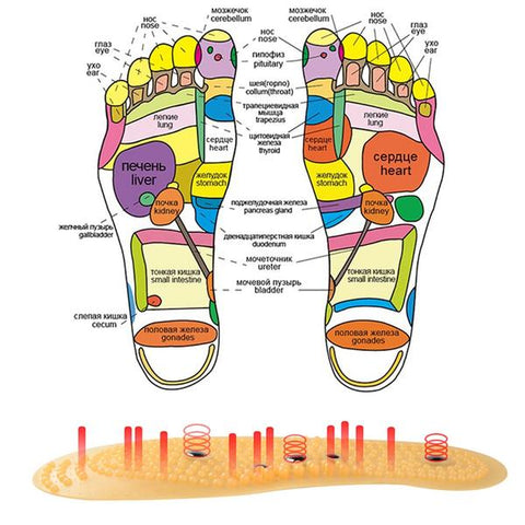 products/walastyle-acupressure-magnetic-insoles-02.jpg