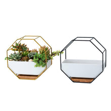 Load image into Gallery viewer, Vizsla Geometric Ceramic Planter