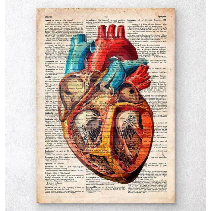 Geometric Heart Anatomy Old Dictionary Page