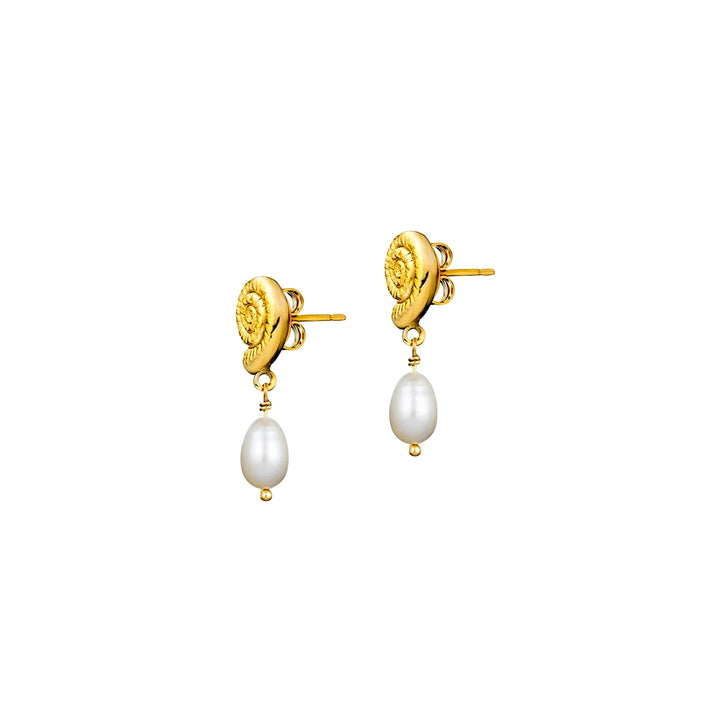 She Shell Gold Plated Pearl Drop Earrings
