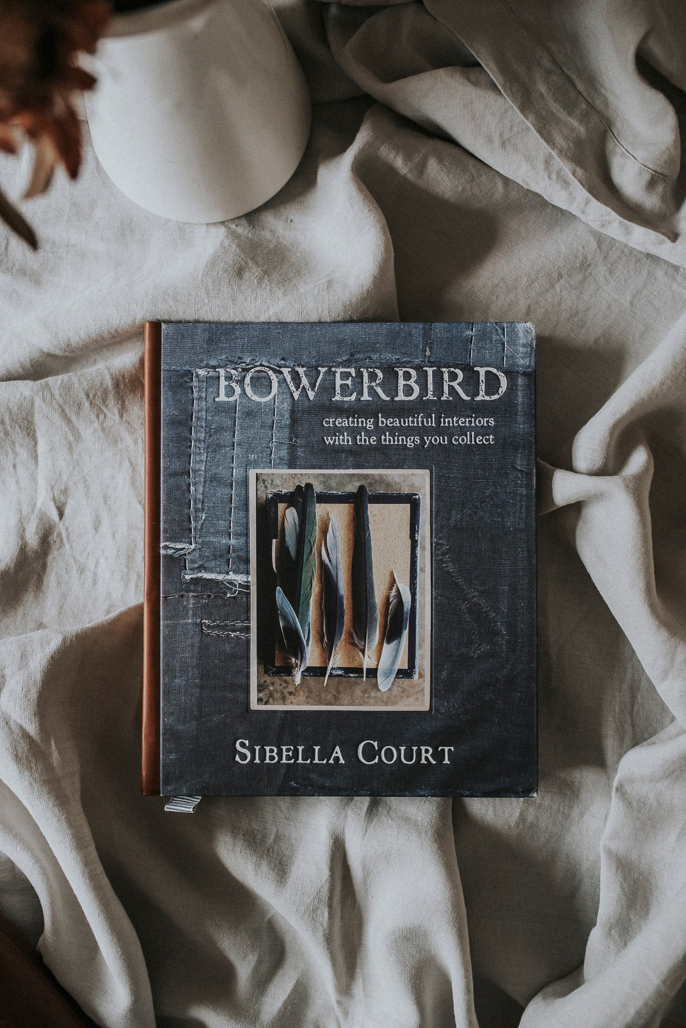 Bowerbird by Sibella Court