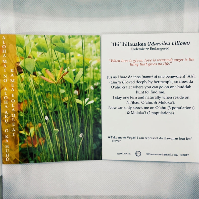Native Hawaiian Plant Greeting Cards <br> (6 Pack)