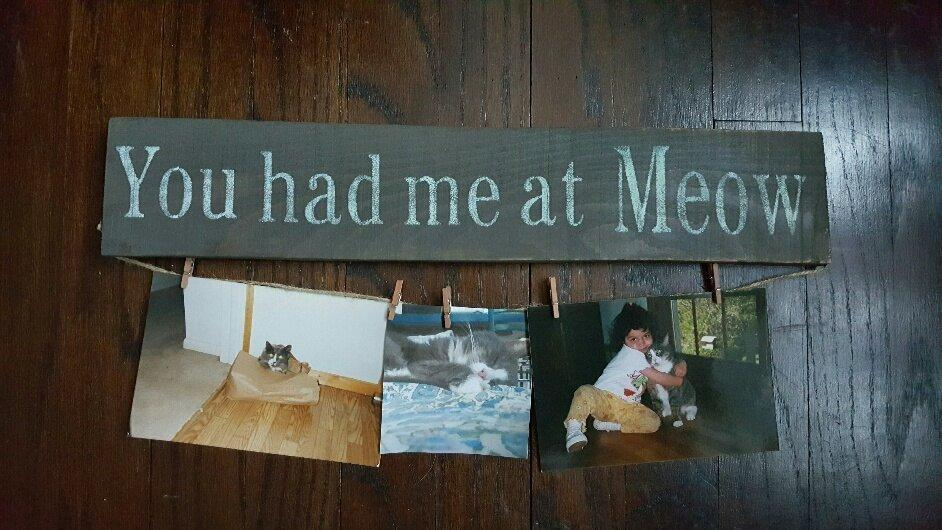 Pet Gift, Kitten Gifts, Cat Lover Sign