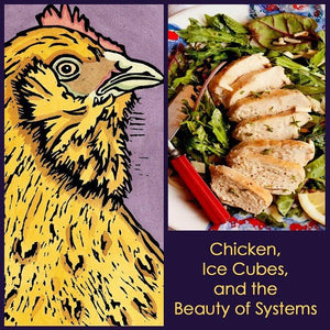 Chicken, Ice Cubes, and the Beauty of Systems