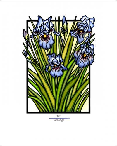 Iris - Simple Giclee Print - Sarah Angst Art Greeting Cards, Giclee Prints, Jewelry, More