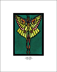 "Luna Moth - 8""x10"" Overstock - Sarah Angst Art Greeting Cards, Giclee Prints, Jewelry, More"