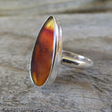 Brown Montana Agate and Sterling Silver Ring