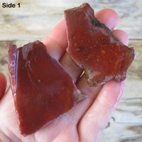 Pigeon Blood Agate Rough Slab