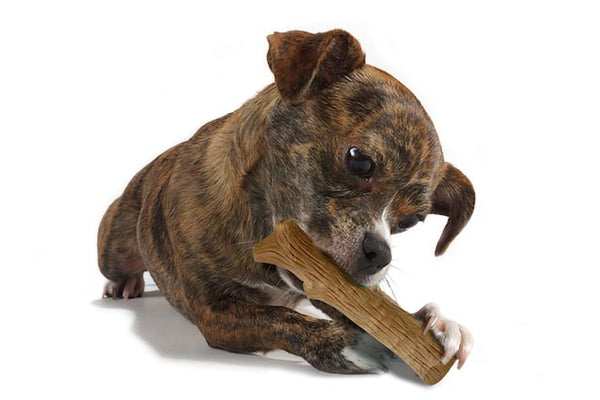 Petstages Durable Stick Tough Dog Chew Toy