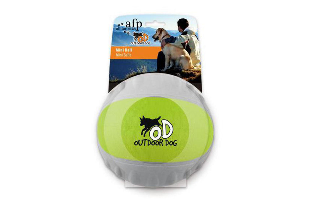 Outdoor Dog Mini Ball