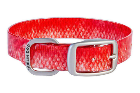 Red Snapper KOA Collar
