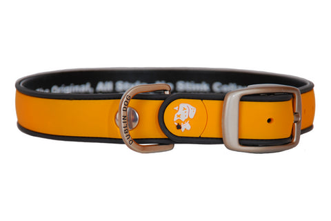 Simply Solid Orange Collar