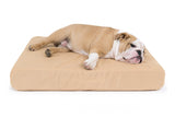 Orthopedic Tuff Bed