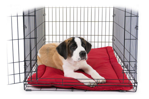 Indestructible Dog Beds Chewproof Dog Beds For