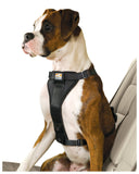 Tru-Fit Enhanced Strength Smart Harness