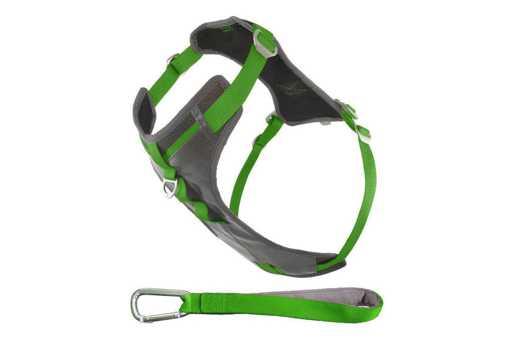 Allagash Safety Walking Harness by Kurgo is durable, waterproof and has all metal hardware
