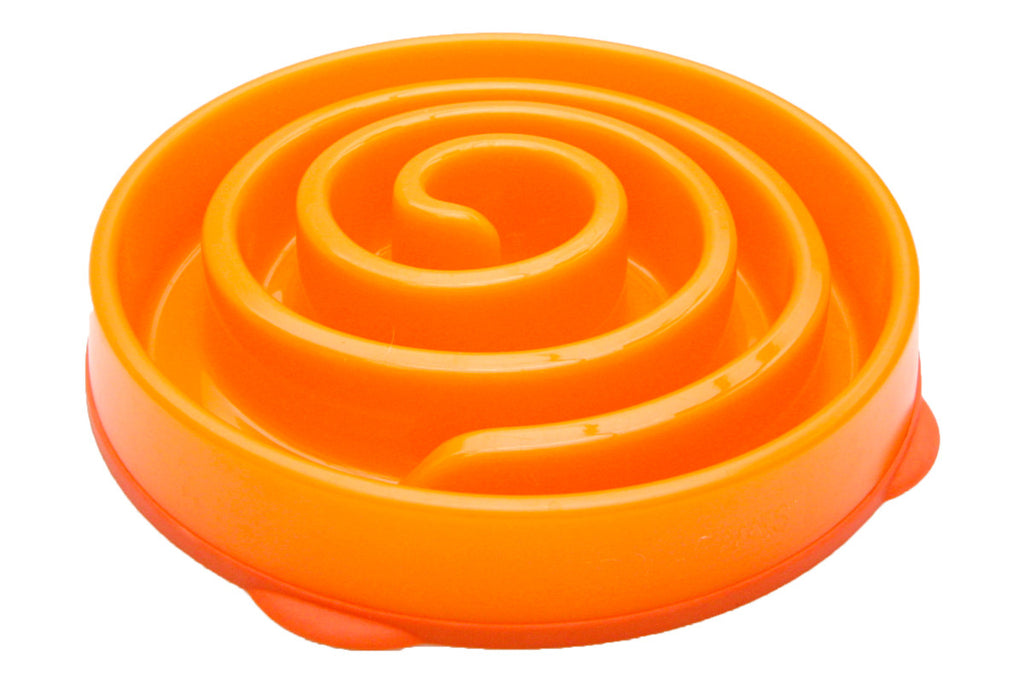 Dog Games Coral Slo-Bowl
