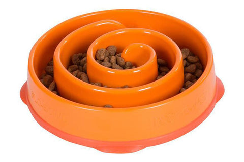 Fun Feeder Orange