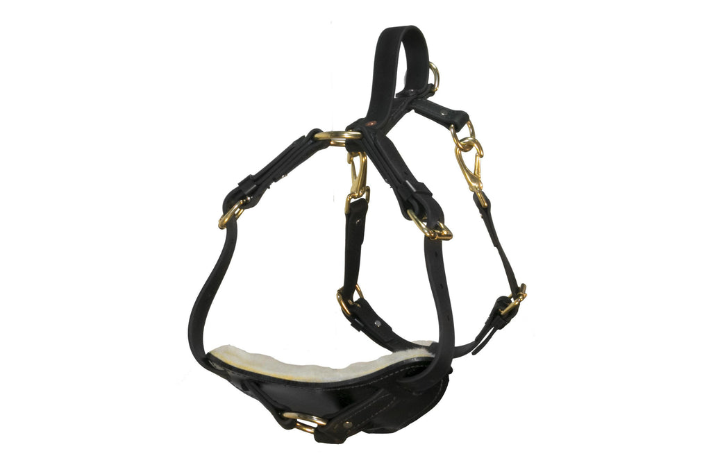 Surge Biothane Working Dog Harness