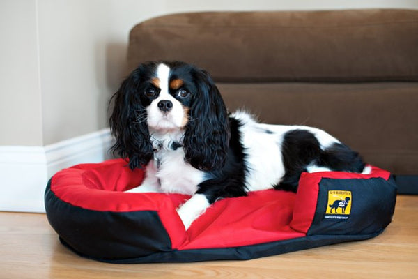 K9 Ballistics Mini Tuff Dog Bed Easy To Clean Beds For