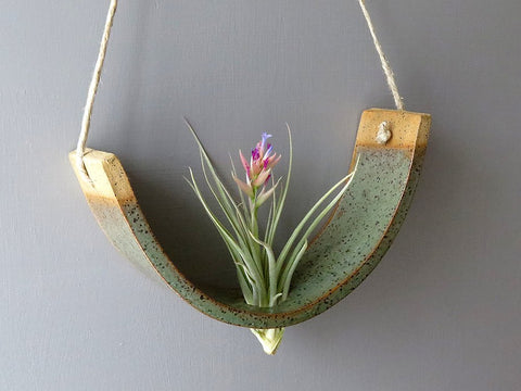 Hanging Air Plant Cradle - Gunmetal Green Planter Vase