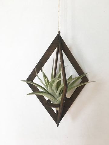 Diamond Air Plant Hanger