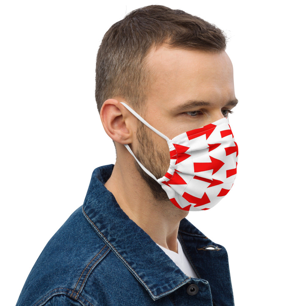 Arrow Design Premium face mask