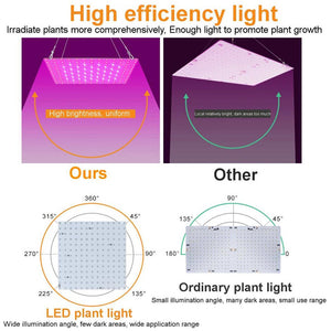 US Plug LED Grow Light Full Spectrum Waterproof Phytolamp Leds Phyto Growth Lamp Plant Lighting For Indoor Plant