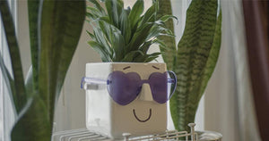 This Face Planter Holds Your Plant AND Glasses | Personalize It w/ Markers