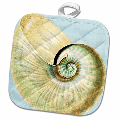 "3D Rose Beautiful White Seashell-Beach Themed Art Pot Holder, 8"" x 8"""