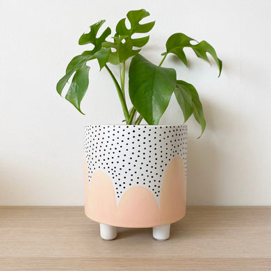 Peach Poppy Seed Leggy Planter