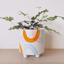 Load image into Gallery viewer, Jaipur Leggy Planter - $50