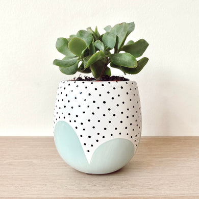 Small Sage Poppy Seed Planter - $32