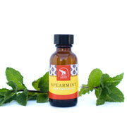 30 ml or 1 ounce essential oil, spearmint