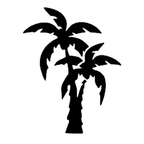 Double Palm Tree, medium