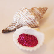 NEW! Fuchsia Biodegradable Glitter Powder