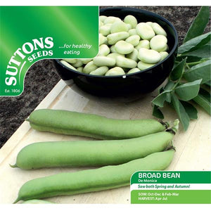 Suttons Broad Bean De Monica